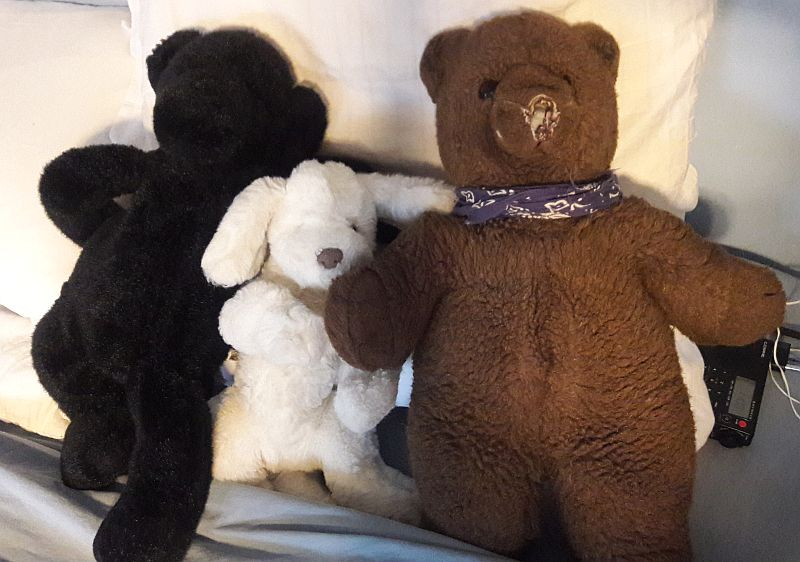 Apprehensive Shit Officer Welfare Lovely Originality Quality Highest Quality Good Soft Continuous Pillow Pets Pillow Dog Fur Toys To Be Highly Praised And Appreciated By The Consuming Public Dog Toys
